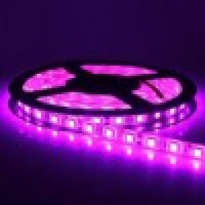 Banda LED 5050, magenta, 60 buc/m, interior, 12W