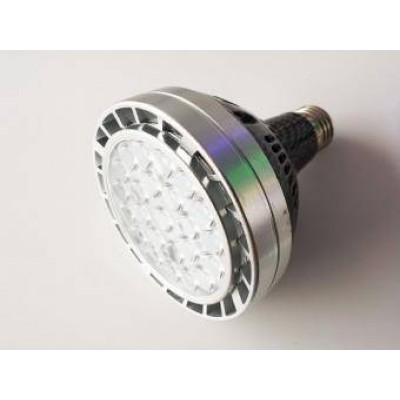 Bec spot LED PAR30 E27 30W