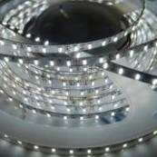 Banda LED 3014, 120 buc/m, exterior, 12W